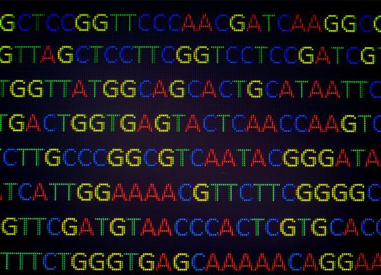 Why Gene Seqencing?